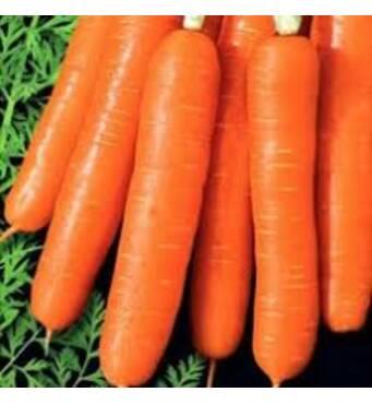 Морковь Медовый поцелуй за 20 г  (ЕМР-77)