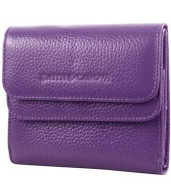 TRC Кошелек или Портмоне Smith&Canova Кошелек женский кожаный SMITH&CANOVA FUL-28611-purple