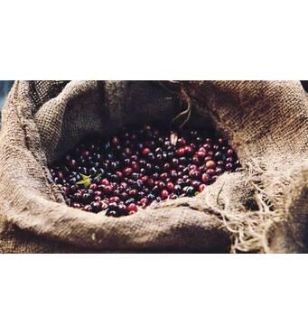 Свежеобжаренный зерновой кофе Эфиопия Йоргачеф (250 г)