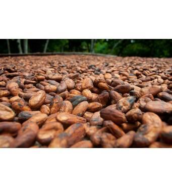 Свежеобжаренный зерновой кофе Кения Капсокисио (250 г)