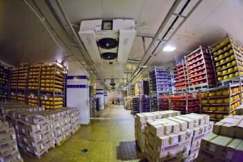 Будівництво холодильних складів для молокозаводів