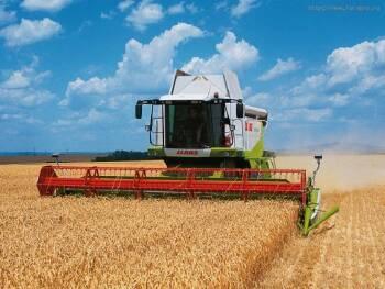 Послуги по збору врожаю сільськогосподарських культур в Україні