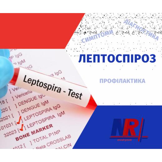 Лептоспіроз: симптоми, діагностика, профілактика