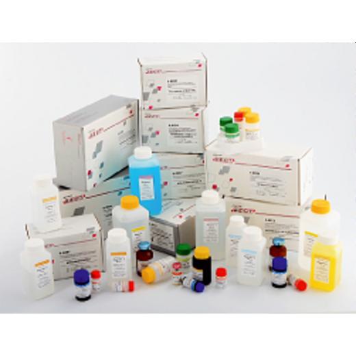 SCC Ag- БЕСТ Набор реагентов для количественного імуноферментного определения антигену плоскоклеточной карциномы