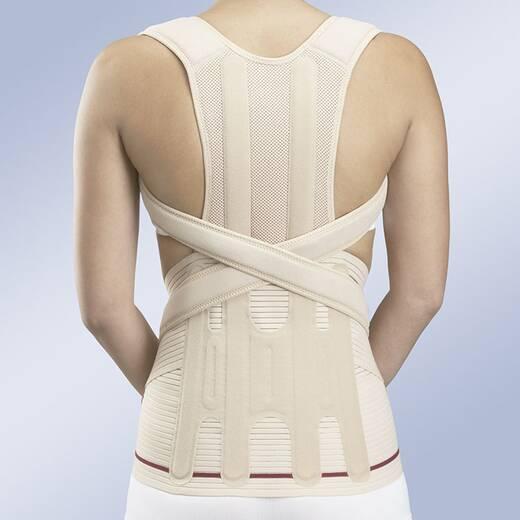 Модуль для груди-поясничного отдела к корсета EVOTEC, полужесткий