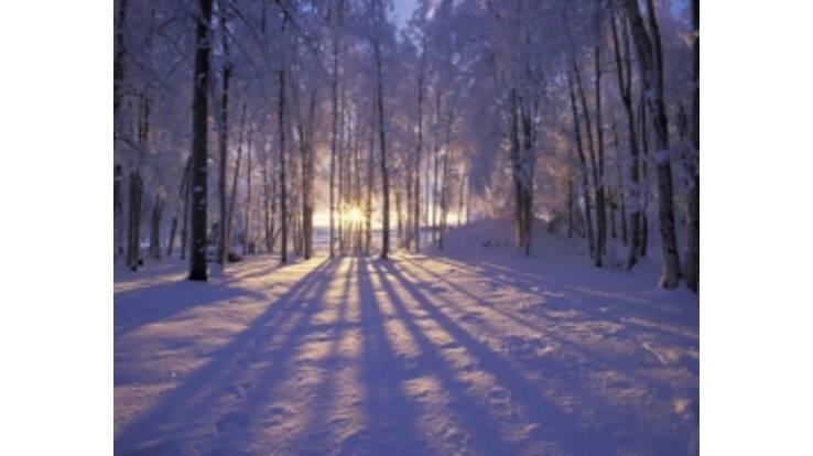 Синоптики розповіли, коли в Україну повернеться зима