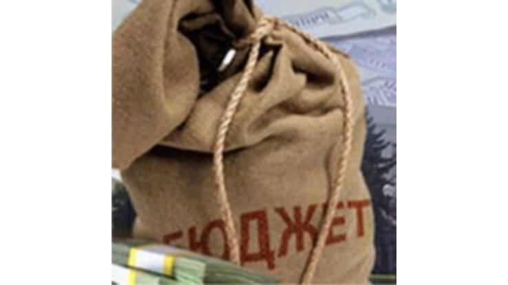 Бюджет-2011 приймуть за новим Податковим кодексом до кінця року