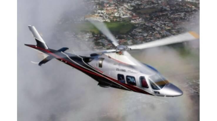 Під вертоліт Януковича виділили понад 2 гектари парку
