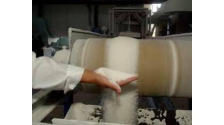 Сумщина - ведущий производитель сахара в Украине