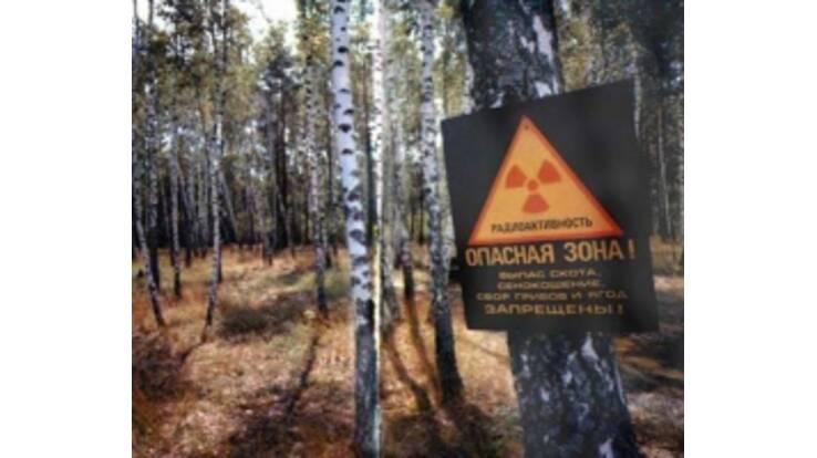 Чорнобильська зона з 2011 року перетвориться у туристичну Мекку