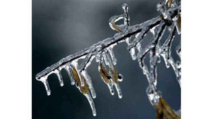 Погода на завтра: синоптики обіцяють потепління до +12 градусів