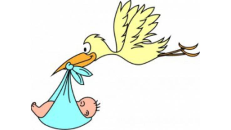 У Новому році лелека приноситиме щасливим батькам і хороші виплати