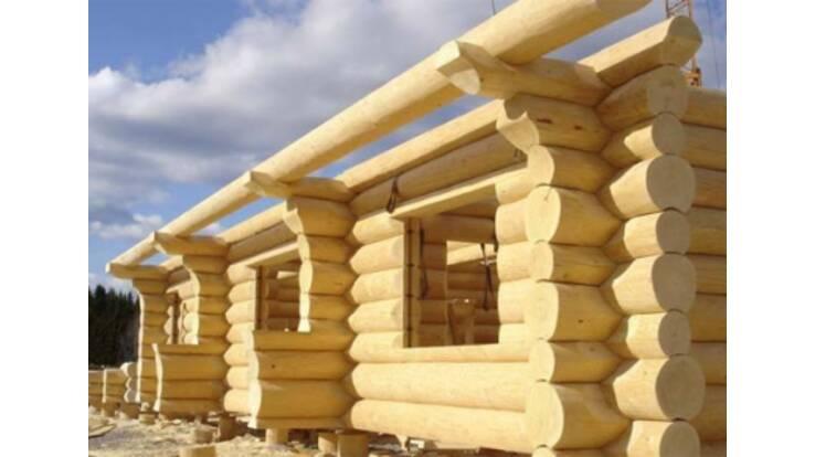 Будувати дерев'яні будинки в Україні вигідно!
