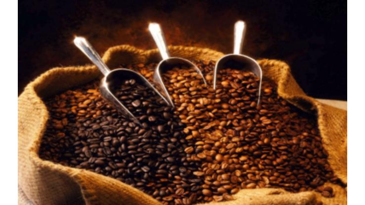 Купаж или моносорт: какой кофе выбрать?