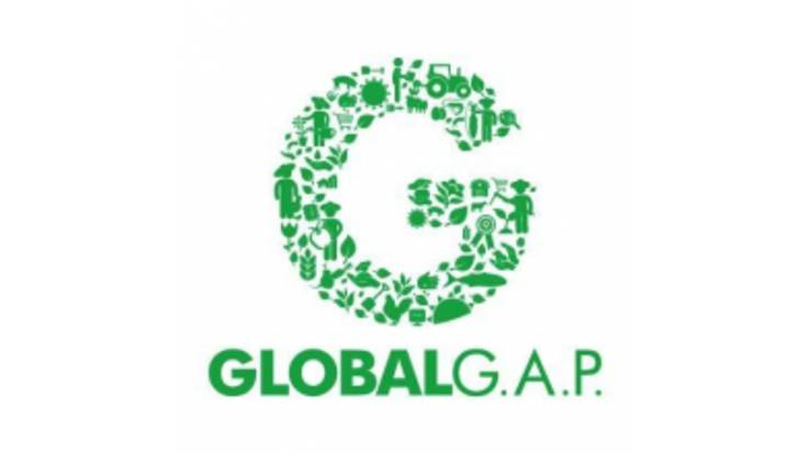 Завершується сертифікація за стандартами GLOBAL G.A.P.