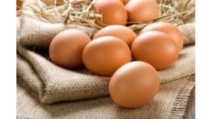 У травні експорт українських яєць збільшився на 60%