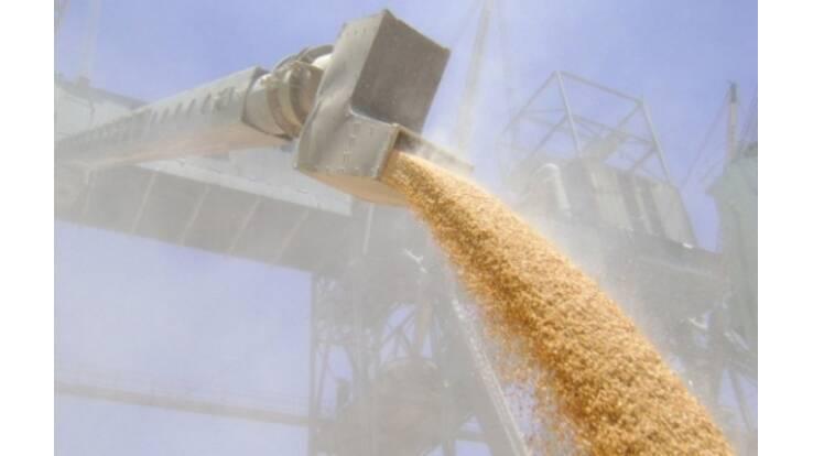 В текущем сезоне Украина укрепила свои позиции на мировом рынке зерна