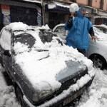 Зимовий бізнес: незвичайні способи заробітку українців
