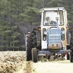 Закордонним аграріям в Україні готові платити 3 тисячі євро