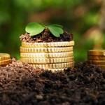 Світовий банк допоможе Україні захистити інвестиції в АПК