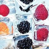 Перевозка замороженной продукции: высший уровень доставки