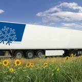 Перевозка пищевых продуктов: безопасность превыше всего!