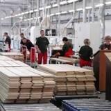 Працівник деревообробного заводу - СТАБІЛЬНА РОБОТА ДЛЯ ВСІЄЇ РОДИНИ