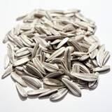 Біле насіння соняшникакупити недорого