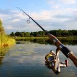 Купити недорого рибальські снасті пропонує наш інтернет-магазин!