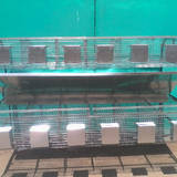 Реалізуємо якісні клітки для кролів