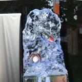 Красивые ледяные скульптуры купить