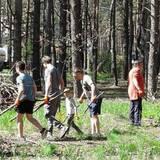 Робота в лісі! Чехія. Збирання гілок, зачистка лісу