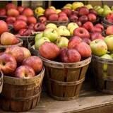 Оптовая продажа яблок в Украине. Цены от производителя!