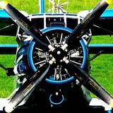 Внесення аміачної селітри з літака ан-2