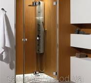 Душові двері Radaway Premium Plus DWD