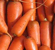 Морковь Аленка за 2 г
