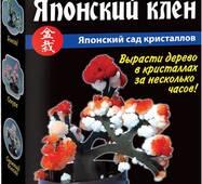 """Японський сад кристалів """"Японський клен"""""""