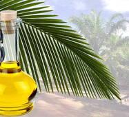 Пальмова олія рафінована купити недорого