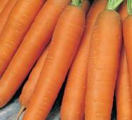 Морква Перфекція за 20 г