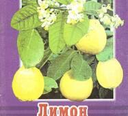 Лимон в квартирі