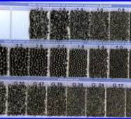 Дріб чавунний литий (ДЧЛ) по ГОСТ 11964-81 фракція 1,4