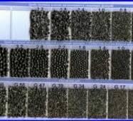 Дріб чавунний литий (ДЧЛ) по ГОСТ 11964-81 фракція 3,6