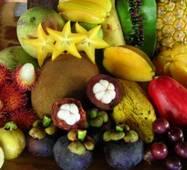 Свіжі фрукти оптом