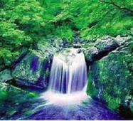"3D-интерьерная панорама ""Лесной водопад-1"""