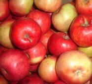 Яблука Айдаред