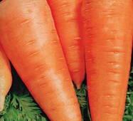 Морква Цариця полів за 2 г