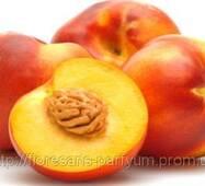 Персиковых косточек масло