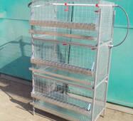Клітка куряча КК-2-3, купити в Києві