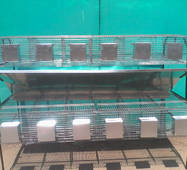 Клітка відгодівельна двоярусна, пристінна КОП, купити в Сумах