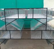 Клітка відгодівельна двоярусна, острівна КОО-1, купити недорого